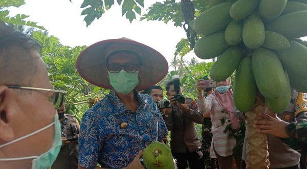 Gubernur Sumbar bersama Kapolda dan Danrem menyaksikan hasil ketahanan pangan dari Polda Sumbar