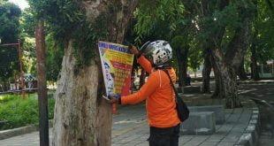Petugas membersihkan pohon pelindung dari leflet dan paku yang dilakukan pihak tak bertanggung jawab
