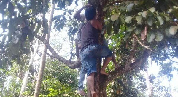 Diduga Karena Asmara dan Keluarga, Seorang Pemuda Tewas Gantung Diri