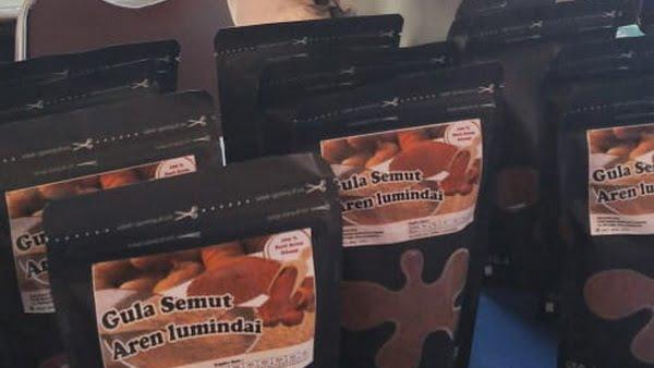 Gula Semut Lumindai