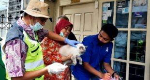 Vaksinasi kucing di Kelurahan Pasar Usang Kota Padang Panjang