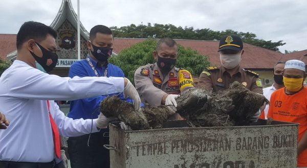 Pemusnahan barang bukti 33,59 gram sabu - sabu dan 16 Kg ganja