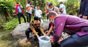 Wakil Ketua Komisi II DPRD Sumbar Muhayatul menebar benih ikan di Koto Ranah, Pesisir Selatan