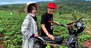 Tour Kerinci-3: Kenapa Kayu Manis & Kopi Kerinci Bisa Mengisi Pasar  Eropa?