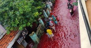 Banjir merah di Pekalongan
