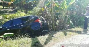 Mobil Dinas Wakil Bupati Agam alami kecelakaaan dan nyelonong ke kebun pisang warga